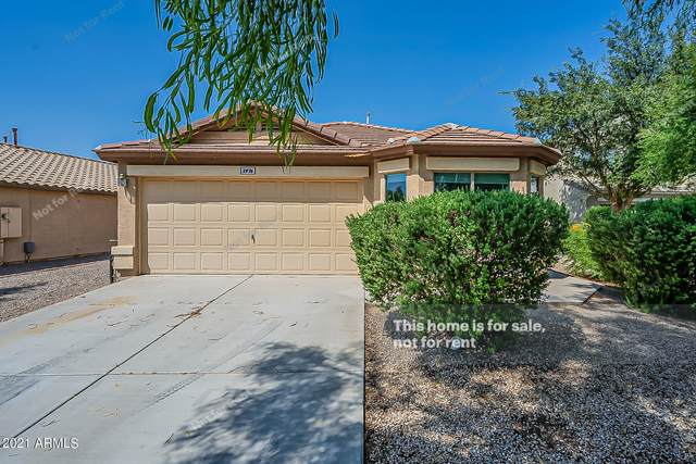 3976 E Rose Quartz Lane, San Tan Valley, AZ 85143 (MLS #6292110) :: The Dobbins Team