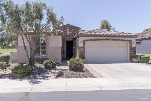 4271 E Blue Spruce Lane, Gilbert, AZ 85298 (MLS #6292139) :: Hurtado Homes Group