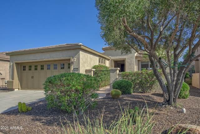 27629 N 129TH Lane, Peoria, AZ 85383 (MLS #6292140) :: Elite Home Advisors