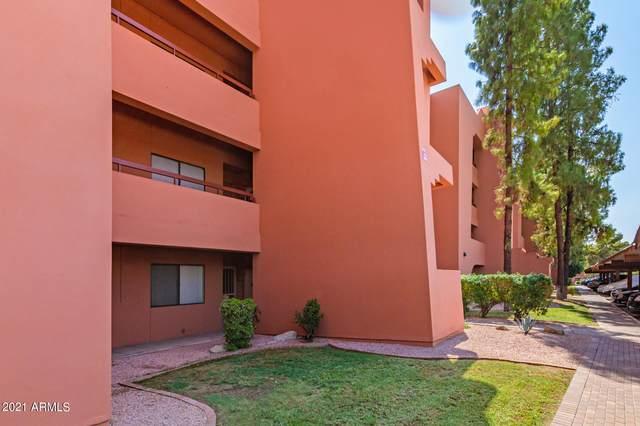 12222 N Paradise Village Parkway S #241, Phoenix, AZ 85032 (MLS #6292147) :: Executive Realty Advisors
