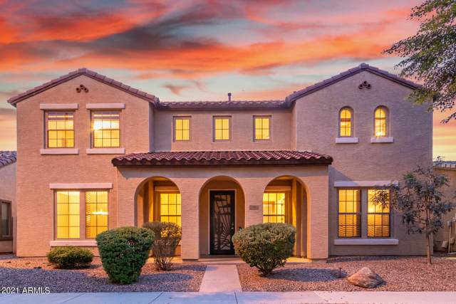 1704 S Rochester Drive, Gilbert, AZ 85295 (MLS #6292149) :: The Everest Team at eXp Realty