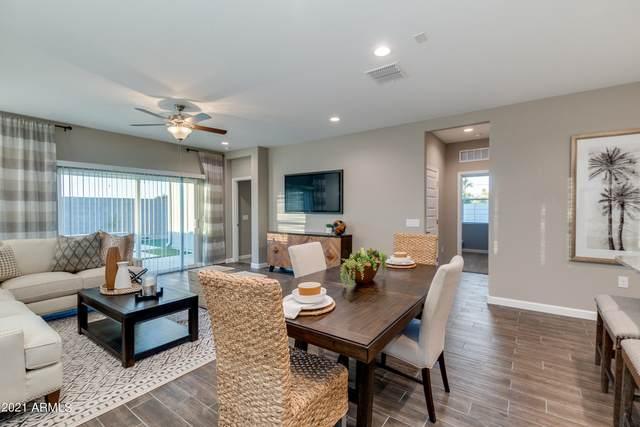 1370 W Siboney Street, San Tan Valley, AZ 85143 (MLS #6292155) :: Elite Home Advisors