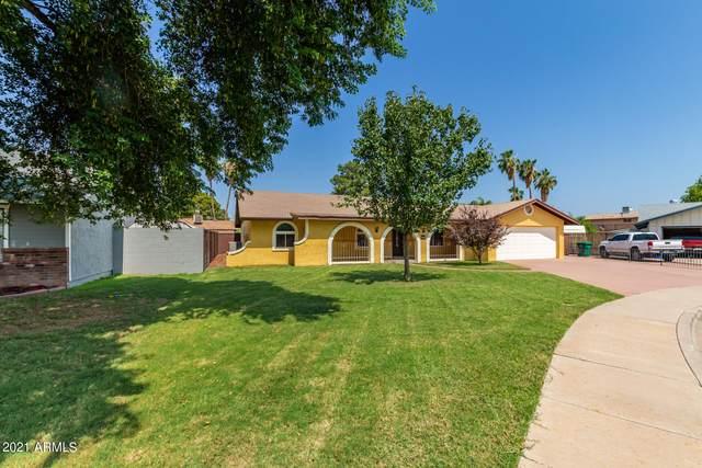 652 E Kael Circle, Mesa, AZ 85203 (MLS #6292183) :: Executive Realty Advisors