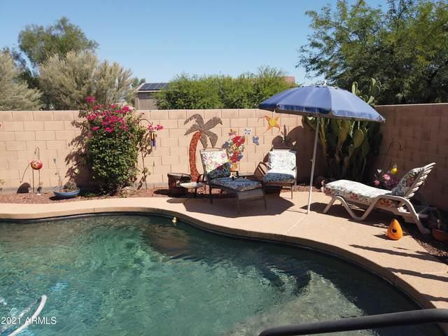 45028 W Desert Cedars Lane, Maricopa, AZ 85139 (MLS #6292273) :: The Riddle Group