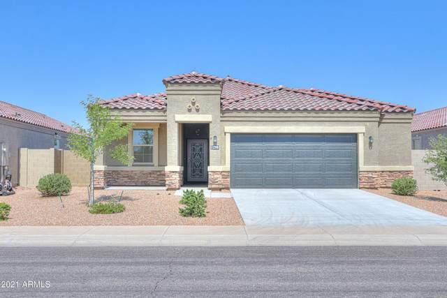 2398 E San Lorenzo Trail, Casa Grande, AZ 85194 (MLS #6292282) :: Yost Realty Group at RE/MAX Casa Grande