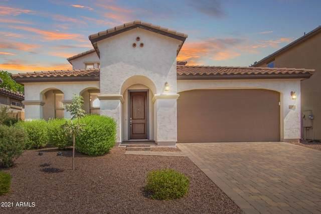 21925 N 97TH Drive, Peoria, AZ 85383 (MLS #6292297) :: Maison DeBlanc Real Estate
