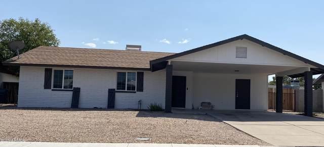 2431 E Jerome Avenue, Mesa, AZ 85204 (MLS #6292301) :: Yost Realty Group at RE/MAX Casa Grande