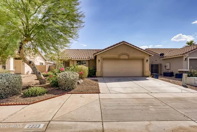 2223 W Goldmine Mountain Drive, Queen Creek, AZ 85142 (MLS #6292354) :: My Home Group