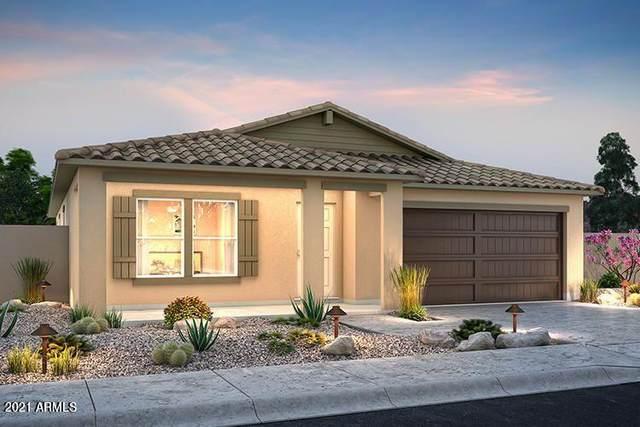 2363 N Sand Hills Court, Casa Grande, AZ 85122 (MLS #6292362) :: Executive Realty Advisors