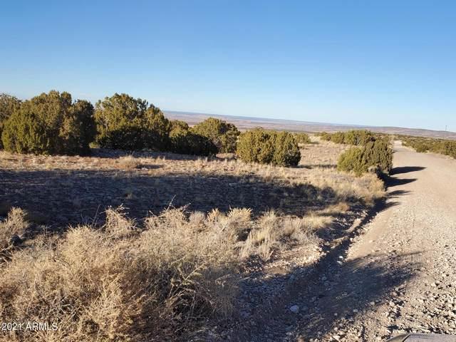 123 Indian Drive, Concho, AZ 85924 (MLS #6292397) :: Klaus Team Real Estate Solutions