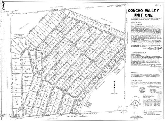 117 County Rd 5062, Concho, AZ 85924 (MLS #6292399) :: Klaus Team Real Estate Solutions