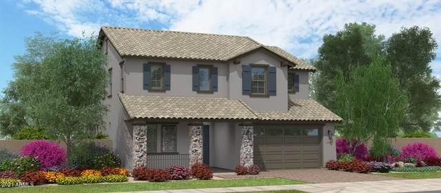 16004 W Soft Wind Drive, Surprise, AZ 85387 (MLS #6292436) :: Elite Home Advisors