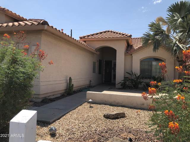9037 E Stoney Vista Drive, Sun Lakes, AZ 85248 (MLS #6292442) :: Elite Home Advisors