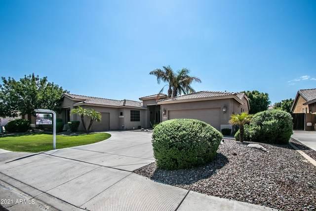 2153 W Enfield Way, Chandler, AZ 85286 (MLS #6292466) :: Elite Home Advisors
