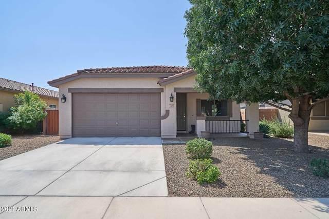 149 W Dragon Tree Avenue, San Tan Valley, AZ 85140 (MLS #6292508) :: Klaus Team Real Estate Solutions