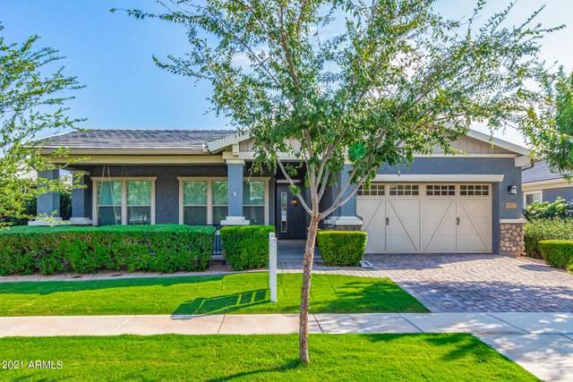 2957 E Sagebrush Street, Gilbert, AZ 85296 (MLS #6292570) :: Elite Home Advisors