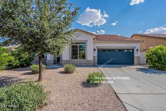 2847 E Isaiah Avenue, Gilbert, AZ 85298 (MLS #6292581) :: Elite Home Advisors