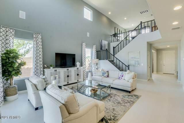 36534 N Asturian Valley Way, San Tan Valley, AZ 85143 (MLS #6292594) :: Elite Home Advisors