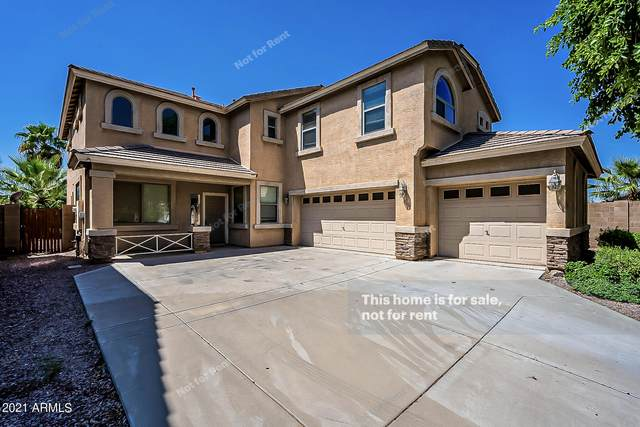 34392 N Vidlak Drive, San Tan Valley, AZ 85143 (MLS #6292597) :: CANAM Realty Group