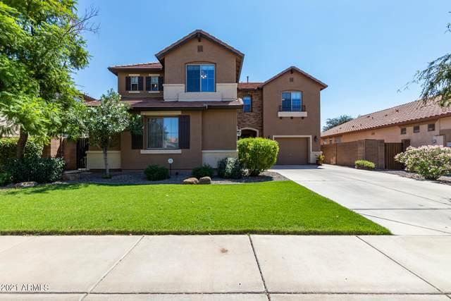 3693 E Sparrow Place, Chandler, AZ 85286 (MLS #6292625) :: Klaus Team Real Estate Solutions