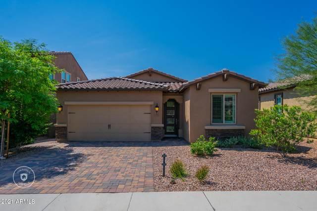 12701 W Caraveo Place, Peoria, AZ 85383 (MLS #6292737) :: Maison DeBlanc Real Estate