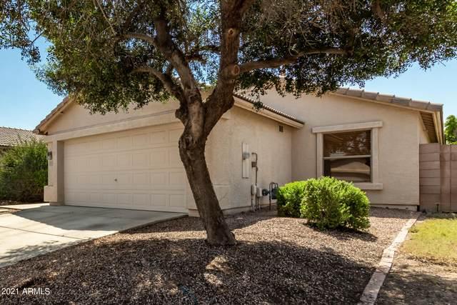 4735 E Mountain Vista Drive, Phoenix, AZ 85048 (MLS #6292836) :: Elite Home Advisors