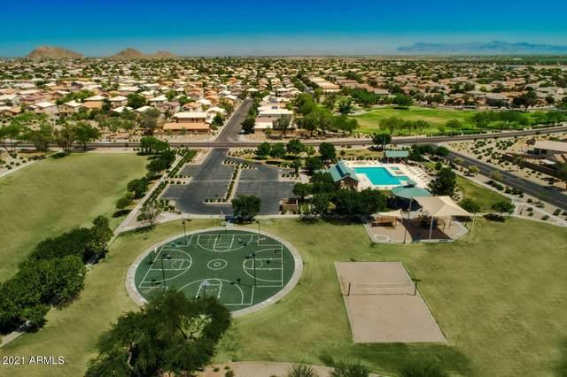 361 E Red Mesa Trail, San Tan Valley, AZ 85143 (MLS #6292878) :: Hurtado Homes Group