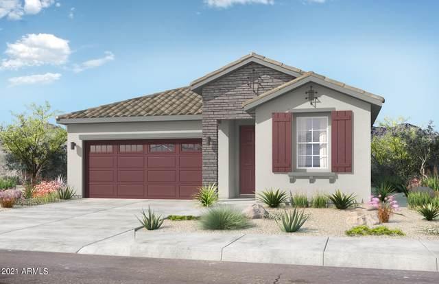 25585 N 144TH Lane, Surprise, AZ 85387 (MLS #6292914) :: Elite Home Advisors