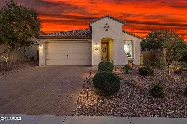 31665 N 132ND Drive, Peoria, AZ 85383 (MLS #6292941) :: Hurtado Homes Group