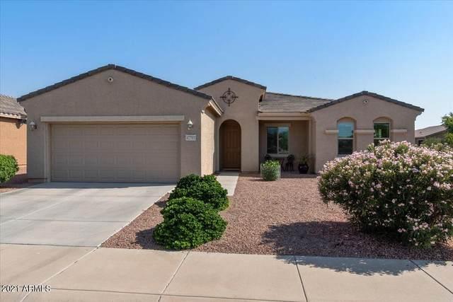 42793 W Kingfisher Drive, Maricopa, AZ 85138 (MLS #6293034) :: My Home Group