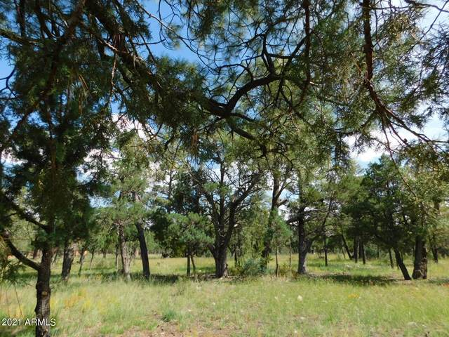 2149 Pine Crest Drive, Happy Jack, AZ 86024 (MLS #6293040) :: The Garcia Group