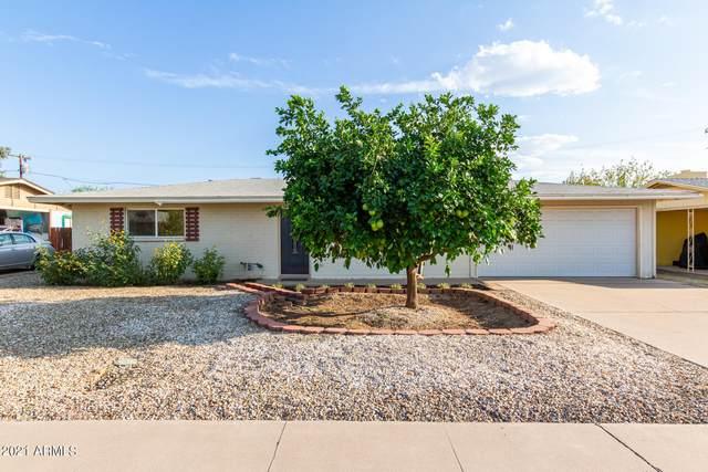 1025 W 10TH Street, Tempe, AZ 85281 (MLS #6293047) :: Hurtado Homes Group
