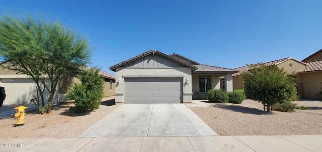 15810 W Port Royale Lane, Surprise, AZ 85379 (MLS #6293076) :: Klaus Team Real Estate Solutions