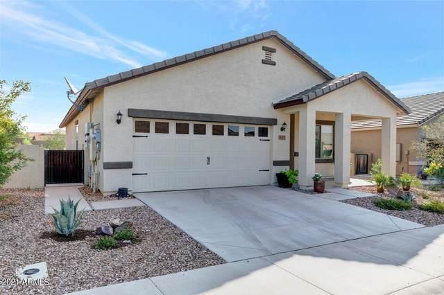 157 S 224TH Avenue, Buckeye, AZ 85326 (MLS #6293079) :: Hurtado Homes Group