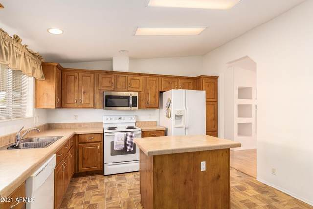 1525 E Campo Bello Drive, Phoenix, AZ 85022 (MLS #6293102) :: Hurtado Homes Group