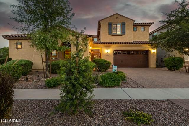 3355 E Indigo Street, Gilbert, AZ 85298 (MLS #6293115) :: Elite Home Advisors