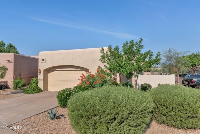 4523 E Renee Drive, Phoenix, AZ 85050 (MLS #6293251) :: Hurtado Homes Group