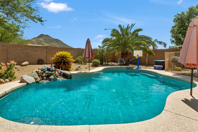 26019 N 65TH Drive, Phoenix, AZ 85083 (MLS #6293316) :: Executive Realty Advisors
