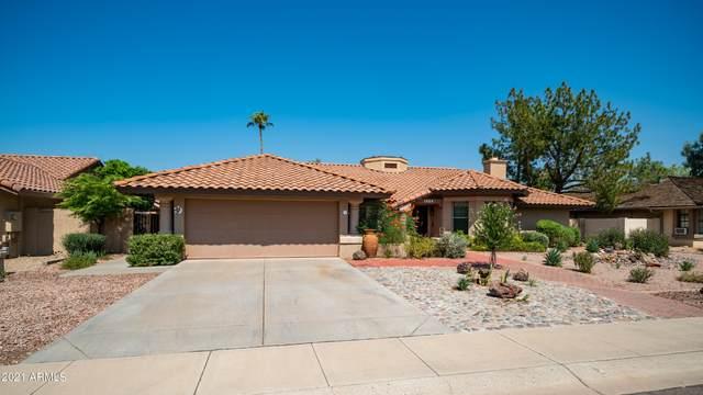 1024 E Vinedo Lane, Tempe, AZ 85284 (MLS #6293344) :: Selling AZ Homes Team