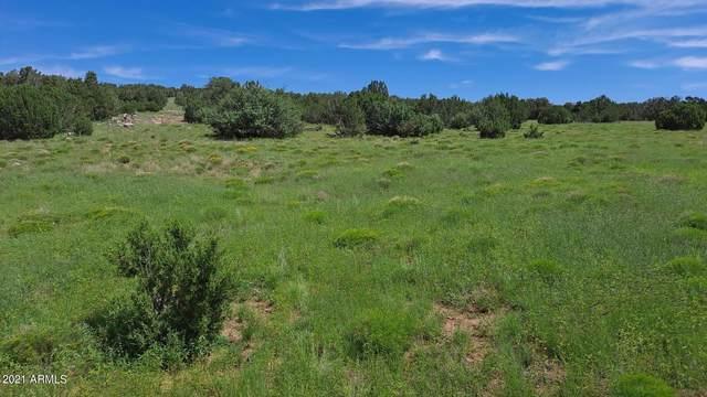 XX County Road, Show Low, AZ 85902 (MLS #6293351) :: The Daniel Montez Real Estate Group