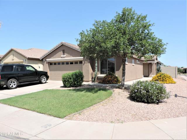 928 W Desert Hills Drive, San Tan Valley, AZ 85143 (MLS #6293364) :: The Riddle Group