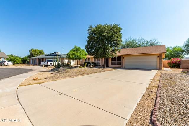 7813 N 107TH Drive, Glendale, AZ 85307 (MLS #6293415) :: Hurtado Homes Group