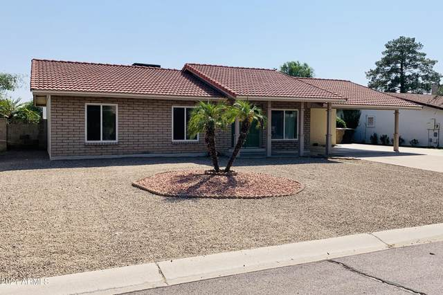 705 E Calle Bolo Lane, Goodyear, AZ 85338 (MLS #6293454) :: Power Realty Group Model Home Center