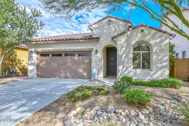 13134 W Rowel Road, Peoria, AZ 85383 (MLS #6293458) :: Elite Home Advisors