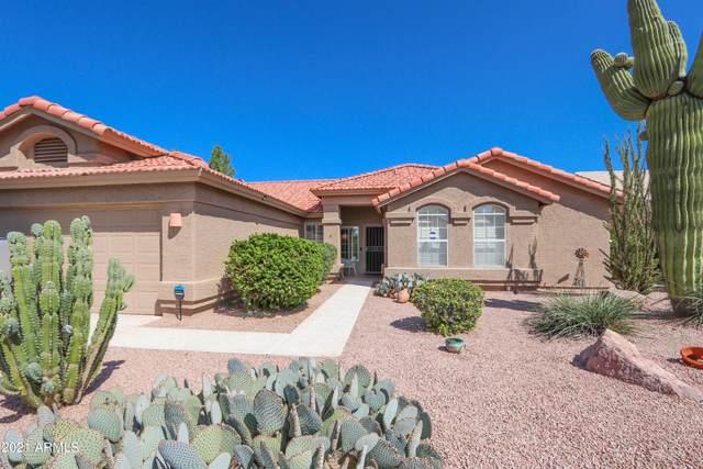 9530 E Hercules Drive, Sun Lakes, AZ 85248 (MLS #6293462) :: Long Realty West Valley