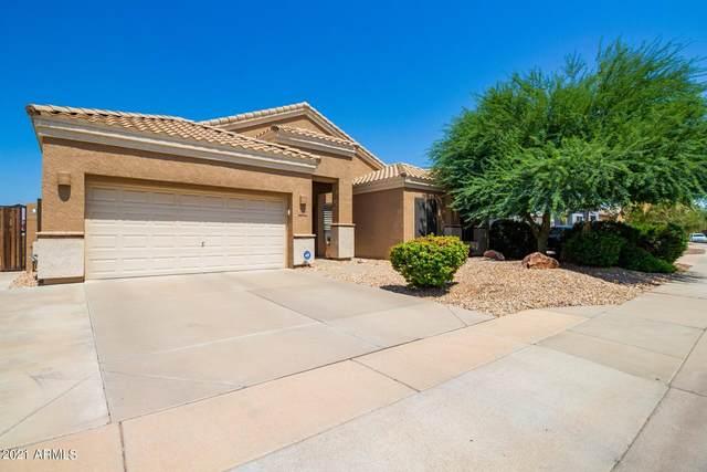 10420 E Irwin Circle, Mesa, AZ 85209 (MLS #6293485) :: Zolin Group