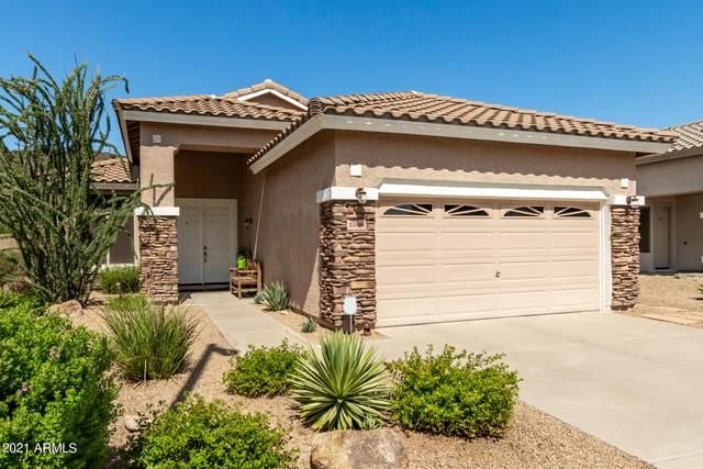 23414 N 21ST Street, Phoenix, AZ 85024 (MLS #6293502) :: Arizona 1 Real Estate Team