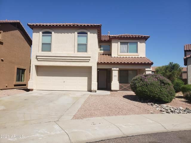 4810 W Beautiful Lane, Laveen, AZ 85339 (MLS #6293544) :: Hurtado Homes Group