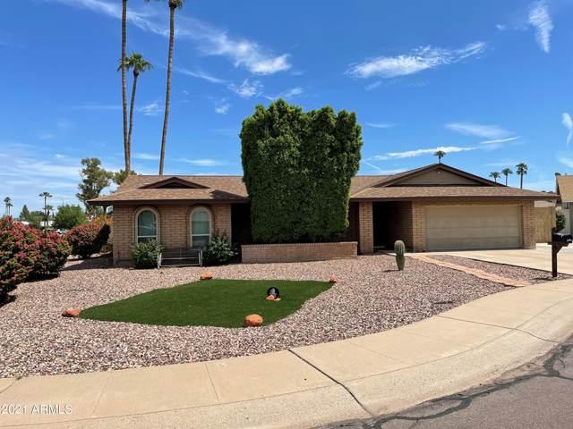 2035 E Watson Drive, Tempe, AZ 85283 (MLS #6293550) :: Elite Home Advisors