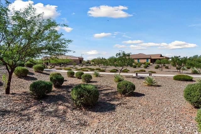 27483 W Mohawk Lane, Buckeye, AZ 85396 (MLS #6293578) :: Zolin Group